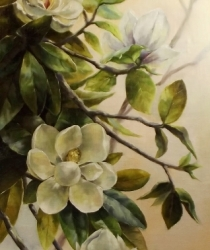 Magnolia. Sold