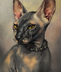 Portrait of the pet in a necklace.
