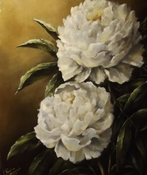White peonies. Sold