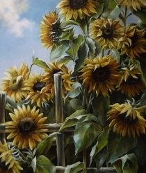 Saulespuķes. Pārdots